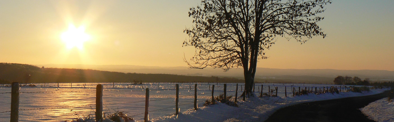 paysage neige - soleil